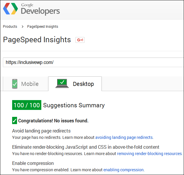 google page speed insights perfect score