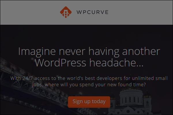 wpcurve wordpress support